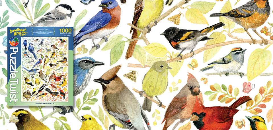 Birds of North America Slider