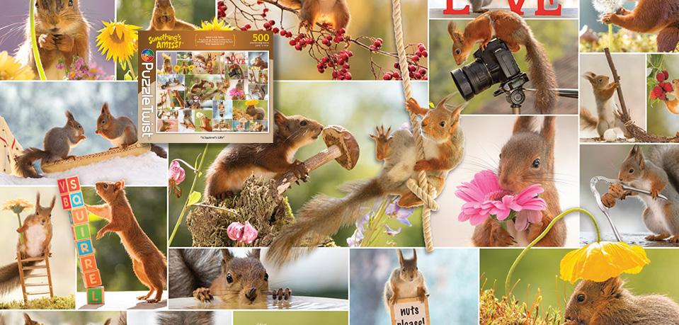 A Squirrel's Life